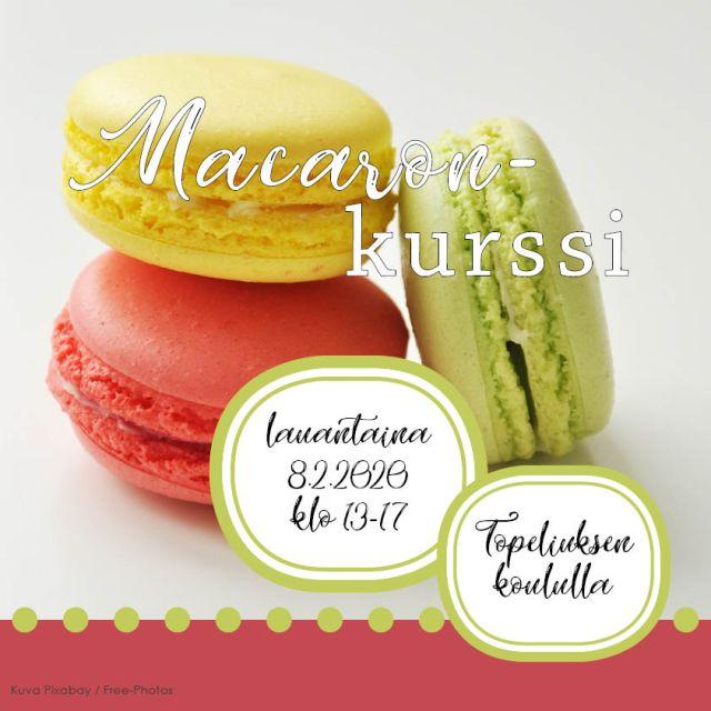 Macaronkurssi_nettibanneri 2020